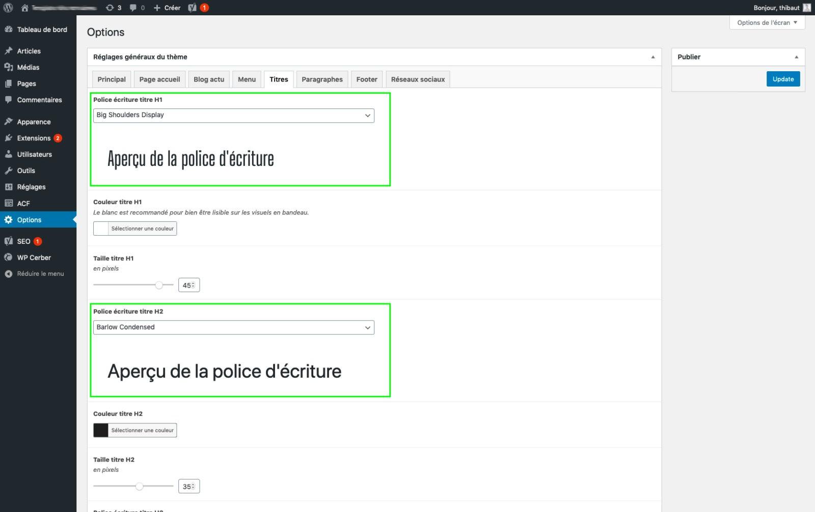 Utilisation champs ACF Google Font