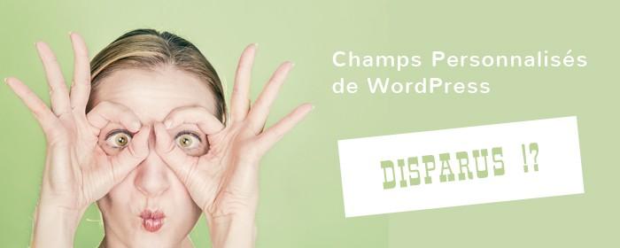 Champs personnalisés WordPress ne s'affichent pas